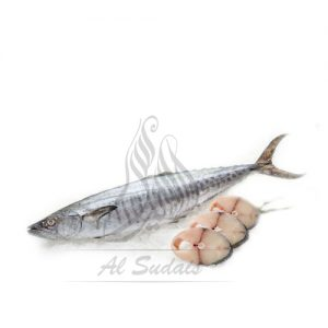 Surmai (King Mackerel)